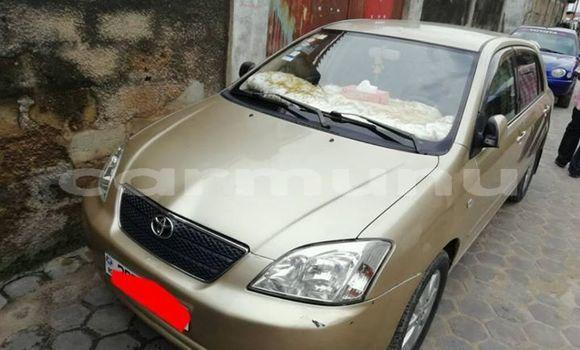 Acheter Occasion Voiture Toyota Corolla Beige à Brazzaville, Commune de Brazzaville