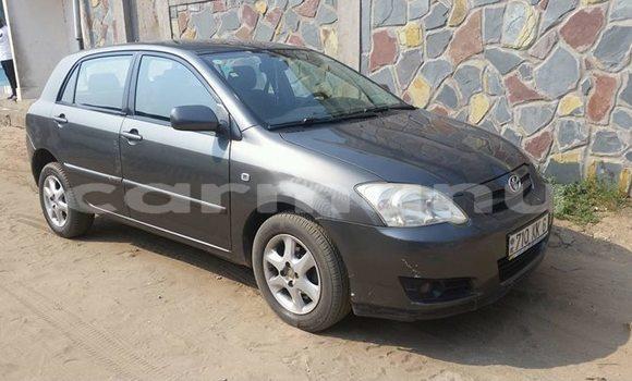 Acheter Occasion Voiture Toyota Corolla Gris à Pointe–Noire, Région du Kouilou