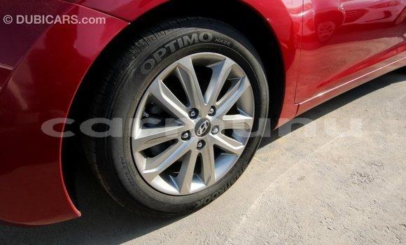 Acheter Importé Voiture Hyundai Elantra Rouge à Import - Dubai, Région de la Bouenza