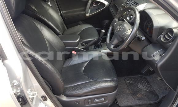 Acheter Occasion Voiture Toyota RAV4 Gris à Brazzaville, Commune de Brazzaville